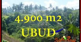 TANAH MURAH JUAL di UBUD BALI 4,900 m2 View Tebing dan sungai