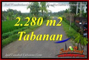 TANAH DIJUAL di TABANAN BALI 22.8 Are di Tabanan Selemadeg