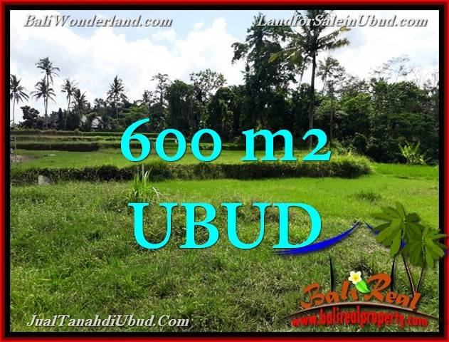 JUAL TANAH MURAH di UBUD 600 m2  View Sawah link Villa