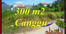 TANAH di CANGGU JUAL MURAH 3 Are VIEW SAWAH, LINGKUNGAN VILLA