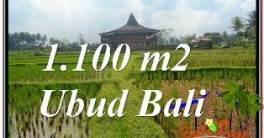TANAH MURAH DIJUAL di UBUD Untuk INVESTASI TJUB670