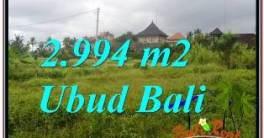 TANAH MURAH di UBUD DIJUAL 30 Are di SENTRAL UBUD