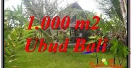 INVESTASI PROPERTY, TANAH MURAH di UBUD BALI TJUB680