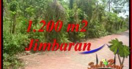 TANAH DIJUAL MURAH di JIMBARAN 12 Are di JIMBARAN ULUWATU
