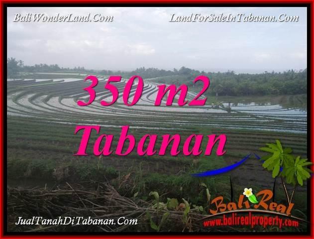 JUAL TANAH DI TABANAN BALI 350 m2  VIEW LAUT DAN SAWAH