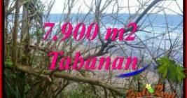 TANAH DIJUAL di TABANAN 7,900 m2 TEPI PANTAI