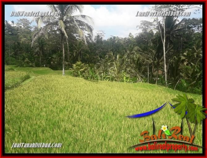 Tanah Murah Dijual di Ubud Untuk Investasi TJUB690