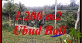 Tanah Dijual di Ubud 12 Are View sawah dan sungai