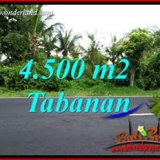 JUAL Tanah Murah di Tabanan Bali 45 Are View Sawah