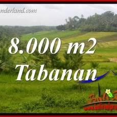 Investasi Properti, Tanah Dijual di Tabanan Bali TJTB397
