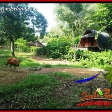Tanah di Tabanan Dijual Murah TJTB412