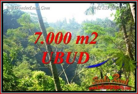 Tanah Murah  di Ubud Bali Dijual 7,000 m2  View Tebing dan sungai