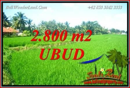 Tanah Murah di Ubud Bali Dijual 2,800 m2 di Sentral Ubud