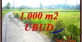 Tanah Murah jual Ubud 1,000 m2 View sawah lingk. villa