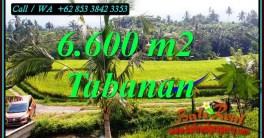 TANAH MURAH DIJUAL di TABANAN BALI Untuk INVESTASI TJTB499C