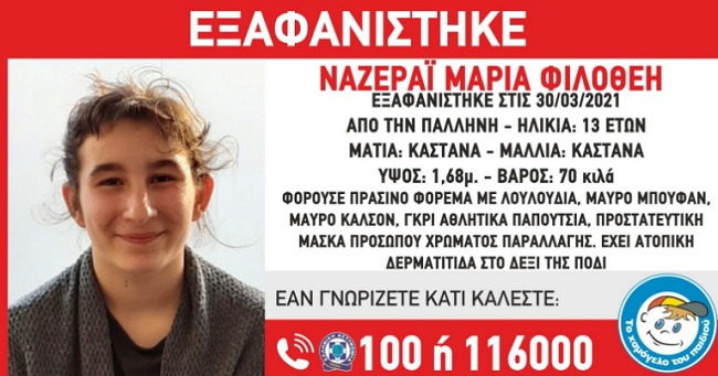exafanisi13pallini