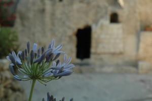Photo: M Nota