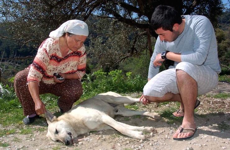 (FOTO: YASAR ANTER / BODRUM, DHA)
