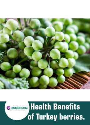 Health Benefits of Turkey berries.