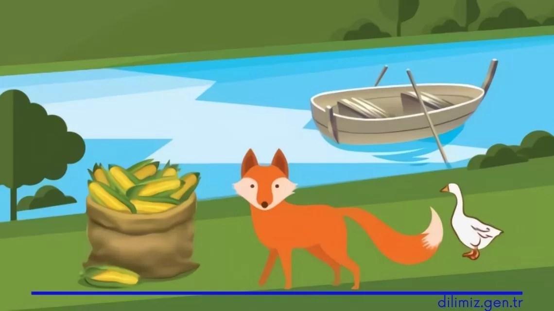 Tilki, Kaz ve Mısır Çuvalı Çözümü (Adım Adım, Resimli)