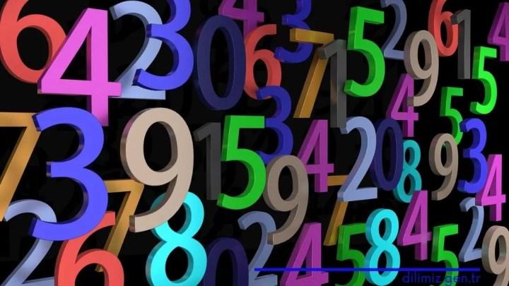 Sayılar ve Çeşitleri / Sayıları Öğrenelim
