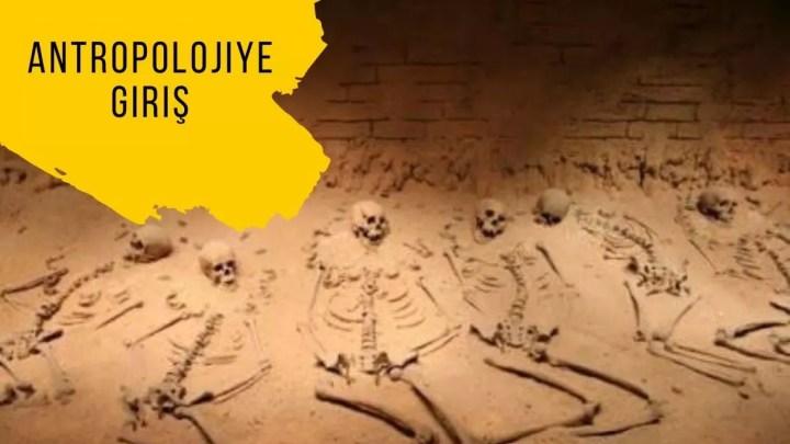 Antropolojiye giriş – Ders notları