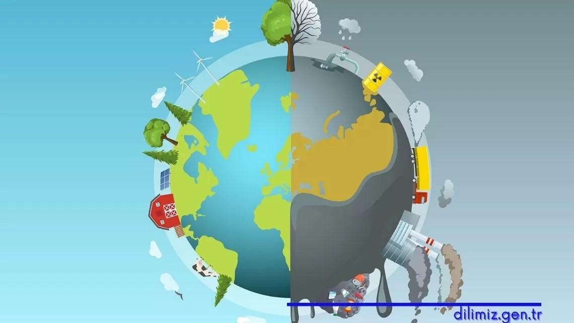 Çevre sorunlarının doğal yaşam ve doğal denge üzerindeki etkileri