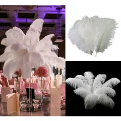 White Ostrich Feather 30-35cm (12-14 inches) DIY Craft Wedding Party Tab 10