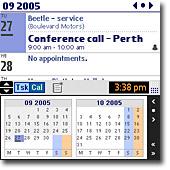 palm_tmp_screenshot.jpg