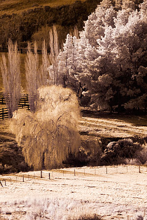 Landscape photography by Wayne J. Cosshall