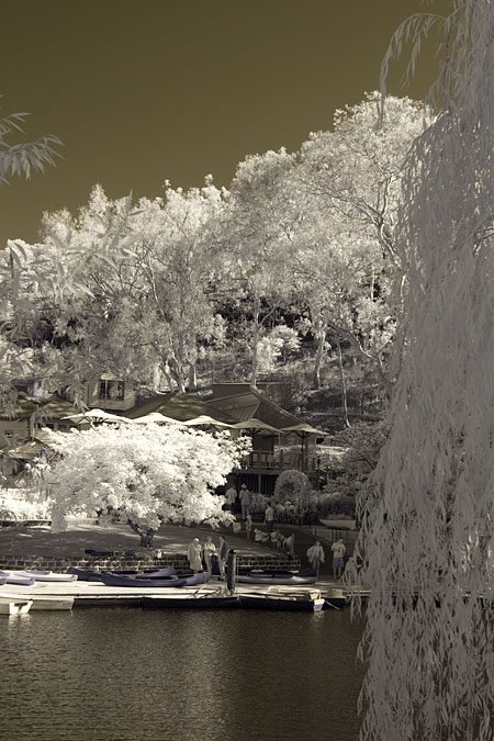 Infrared photograph taken with converted Canon 350D