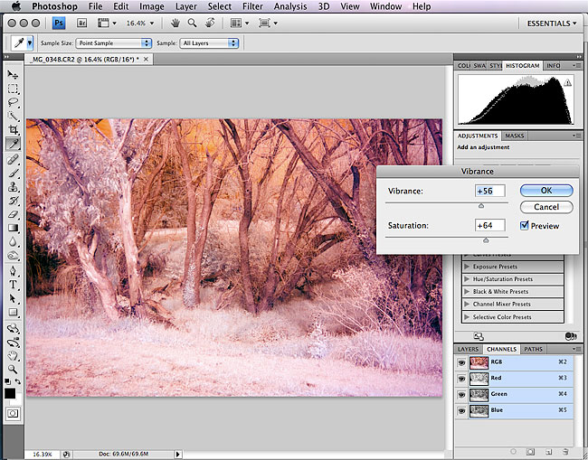 Digital infrared photography processing in photoshop