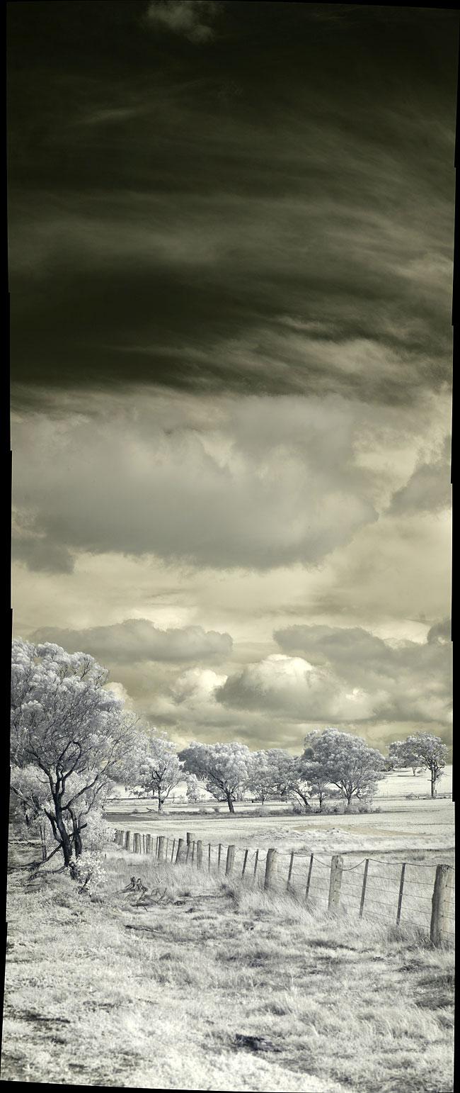 A verticl panorama