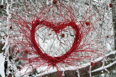 Sirds formas dekors no purpura kārkla šķirnes 'Nana' zariem