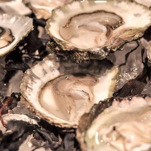 Ostrica piatta - European flat oyster