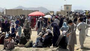 Les talibans «prêts à protéger» l'accès à l'aéroport de Kaboul, assure la Maison-Blanche