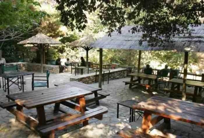 Λες και είσαι στην εξοχή.. Πού θα πιείτε καφέ μέσα στη φύση στην Αθήνα