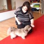 Hundeskolen: Kontaktøvelser og Leg