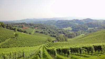 Memory Lane: Roadtrip to Austria