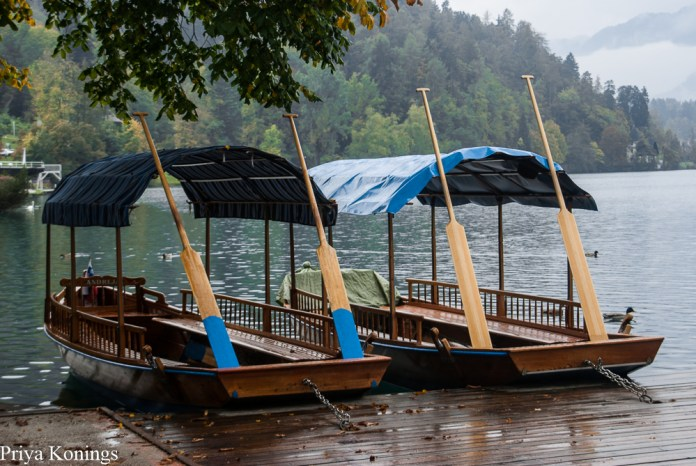 Lake Bled Canoes