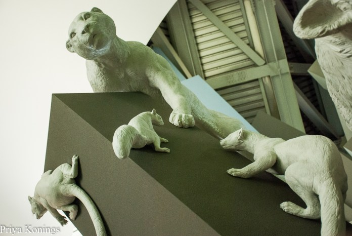 Long Weekend in Panama City: Biodiversity Museum