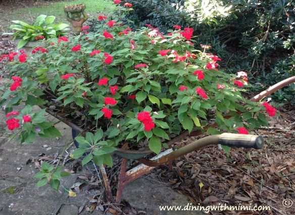 Wheelbarrow holding red flowers www.diningwithmimi.comOld Southern Rice Dressing Recipe
