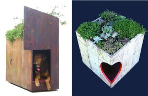 sustainable-pet-design