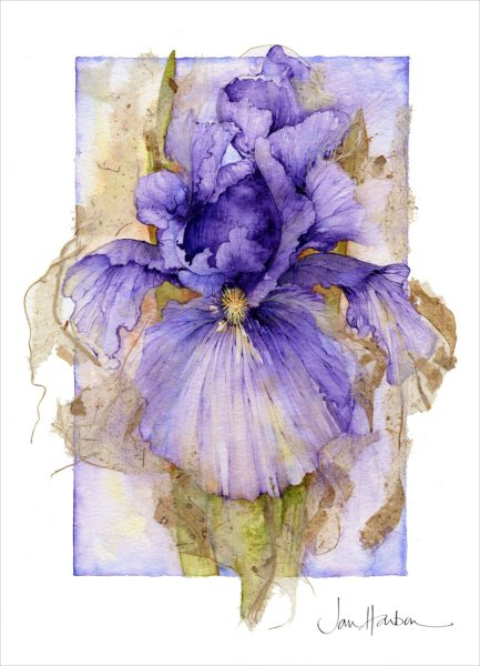 Iris Jan Harbon