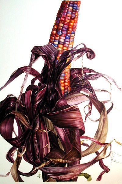 Ornamental Corn Paul Fennell