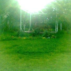 iarba e tot mai deasa