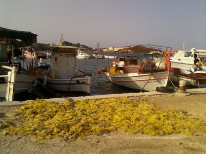 Pescarii au pauza