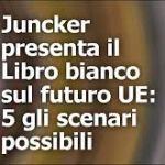 LIBRO BIANCO UE