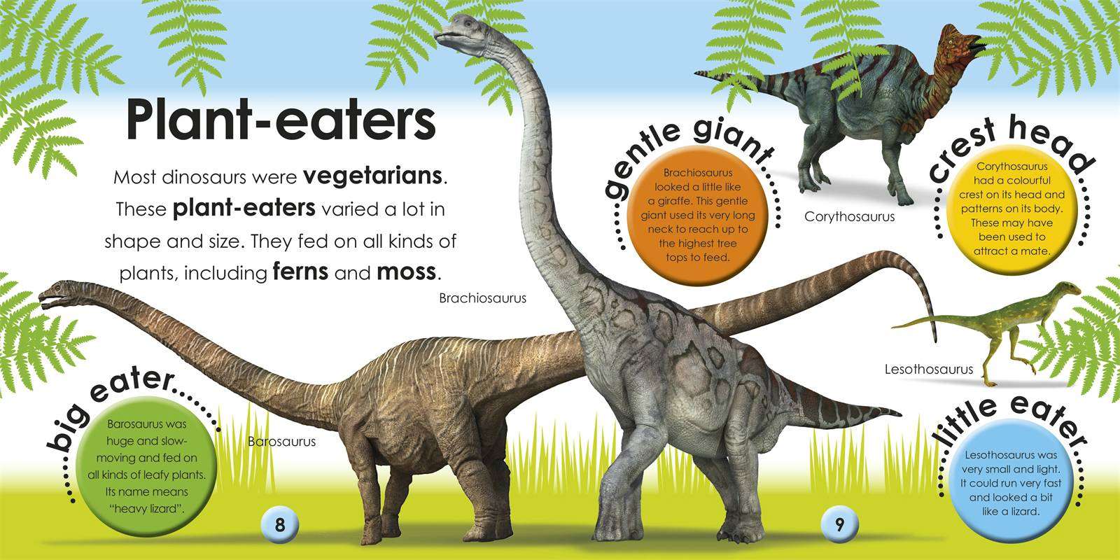 Dinosaur Information For Kids