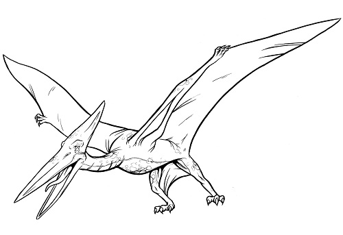 free pages of pterodactyl cartoon